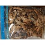 種子10粒・20粒・50粒 プルメリア種子ミックス(PLUMERIA MIX)