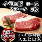 イベリコ豚 ロース ステーキ・とんかつ用 5枚×100g ベジョータ 豚肉 お歳暮 お中元 ステーキ肉 お取り寄せグルメ 高級肉 お正月 食べ物 お肉