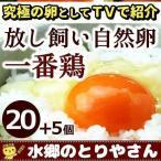 鶏卵 放し飼い自然卵 一番鶏 25個詰 (20個+破損保障分5個) 安心卵 / 冷蔵 限定配送