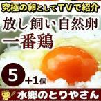 鶏卵 放し飼い自然卵 一番鶏 6個詰 (5個+破損保障分1個) 安心卵 / 冷蔵 限定配送