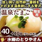 卵 贈答用 温泉たまご 50個詰 (40個+破損保障分10個) 温泉卵 温泉玉子 / 冷蔵 限定配送