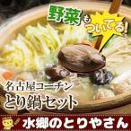 名古屋コーチン 鍋セット 水炊き 鳥鍋(野菜付き)