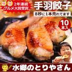 餃子 手羽餃子 10本セット ポッキリ