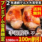 ショッピング餃子 餃子 手羽餃子 20本セット ぎょうざ 送料無料 手羽先餃子