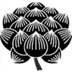 蓮蓮の画像