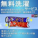 特別企画 鯉のぼり ワタナベ 錦鯉 無料洗濯 サービス 145311010