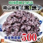 岡山県産 黒米 500g 新米 平成28年産 時国農園より産地直送