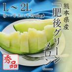 (6月上旬頃より発送) 送料無料 熊本県産 肥後グリーンメロン ギフト 秀品 L〜2L 5〜6玉入り 約8kg メロン フルーツ