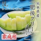 (5月下旬より発送) 父の日 送料無料 メロン フルーツ 訳あり 熊本県産 肥後グリーンメロン 家庭用 5L 2玉入り 約4.5kg