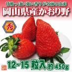 送料無料 フルーツ ギフト 岡山県産 かおり野 12〜15粒 約450g 化粧箱入 苺 いちご イチゴ
