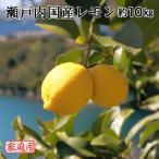 瀬戸内国産レモン 約10kg ご家庭用 送料無料