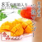 プレゼント ギフト 宮崎県産 完熟マンゴー 秀品 3Lサイズ 8玉 化粧箱入リ 送料無料 宮崎マンゴー 母の日 父の日