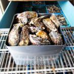 殻付き生牡蠣 瀬戸内市邑久町虫明産 一斗缶 たっぷり10kg 約120個 産地直送