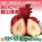 送料無料 フルーツ ギフト 岡山県産 おいCベリー 12〜15粒 約450g 化粧箱入  苺 いちご イチゴ