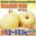 岡山県産 鴨梨(ヤーリー) 家庭用 5〜8玉 約2kg