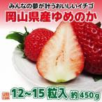 送料無料 フルーツ ギフト 岡山県産 ゆめのか 特選 12〜15粒 約450g 化粧箱入 苺 いちご イチゴ