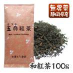 国産無農薬紅茶 五月 100g 水車むら農園 無添加 国産紅茶 静岡産 通販