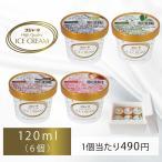 選べるプレミアムアイスクリーム 詰め合わせ 120ml (6個入)【お届け日指定が必須(月曜日×)】【配送地域限定】