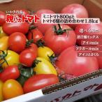 親バカトマトとミニトマトの詰め合わせ 約2kg いわき市産 選べるミニ