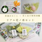 12か月の花香水(全12種類)日本製香水 香水フレグランス 香水レディース