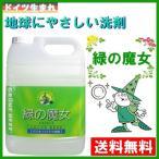 ショッピング洗剤 緑の魔女 キッチン 5L 緑の魔女 キッチン 5l 液体洗剤 キッチン用