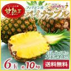凤梨 - スミフルこだわり 甘熟王パイン 6玉 /糖酸度のバランスが絶妙/フィリピン産パイナップル
