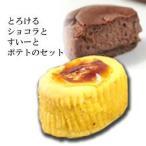 スイートポテト バースデー 洋菓子 手土産 チョコレート ショコラ スイーツ ギフト お取寄せ 住吉屋 15個
