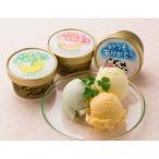 いつもありがとう 北海道アイスセット(3種・計11個) 手土産 洋菓子 詰め合わせ ギフト お返し 贈り物 14670423 (2020 お歳暮 スイーツ 人気 おしゃれ お菓子)