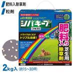 芝生 除草剤 シバキーププラスV 2kg 4903471101886 レインボー薬品 土壌処理型