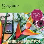 カタログギフト オレガノ ミストラル 501M047