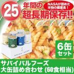 (非常食 保存食) サバイバルフーズ 大缶 詰め合わせ
