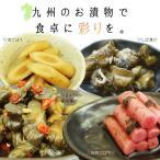 ショッピング福袋 福袋 漬物 詰め合わせ 4種 人気商品 九州の彩りお漬物セット ゆうパケット