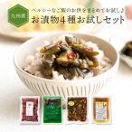 漬物 詰め合わせ 4種 人気商品 九州の彩りお漬物セット 4種 ゆうパケット