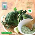 九州産 ブロッコリーパウダー 40g 離乳食 介護食 お菓子 パン作り 無添加 国産 ゆうパケットのため代引不可(出荷目安:1〜2週間)