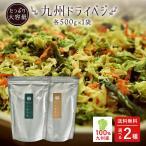 乾燥野菜 国産 九州産 ドライベジ 5袋 味噌汁 ラーメン 野菜不足 に 4種の九州産野菜 ゆうパケットのため代引不可
