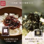 国産 ご飯のお供 最強セット 九州旨辛茎わかめ 250g & 焼海苔佃煮いそごこち200g セット ゆうパケット