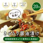 漬物 きゅうり 醤油漬け 国産 20袋 送料無料 通常便 (出荷目安:ご注文後1〜2週間)