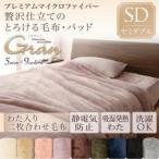 毛布 セミダブル 2枚合わせ毛布 洗える マイクロファイバー 静電気防止加工 洗濯 発熱わた入り2枚合わせ毛布単品 ウォッシャブル