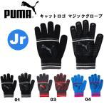 プーマ キャットロゴ マジックグローブ 041287 puma 手袋