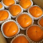 富有柿 贈答 2Lサイズ×12個  奈良 王隠堂 特別栽培 パンドラファーム 減農薬 有機質肥料使用 産地直送