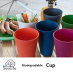 エコソウライフ カップ EcoSouLife |Biodegradableシリーズ|竹とコーンスターチが主成分の天然素材 バンブー カップ タンブラ フェス
