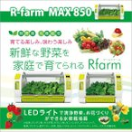 ┐х╣╠║╧╟▌┤я Cupid farm R-farm MAX 850 ╝л▓╚║┌▒р/╠╡╟└╠Ї/═н╡б║╧╟▌/╠ю║┌║юдъ