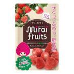 ◆フリーズドライ ミライフルーツ いちご10g(9ヶ月〜)