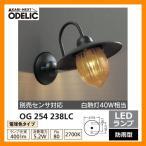 LED 照明 LED ポーチライト OG 254 238LC LEDライト 外灯 屋外 門灯 ODELIC オーデリック 送料無料