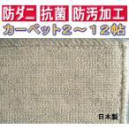 カーペット 防ダニ・抗菌・防汚ループ  6畳用 六畳 アイボリー本間6帖