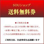 1円 送料無料クーポン券  5000円(税込)以上のお買い物で  レビュー記入するだけでお得な送料無料券