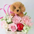 ショッピングプリザーブドフラワー プリザーブドフラワー 花 誕生日 トイプードル 造花のフラワーアレンジメント 誕生日プレゼント女性 花 ギフト