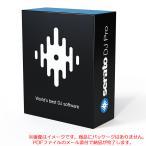 SERATO DJ ダウンロード版 在庫限りの特価品!安心の日本正規品!