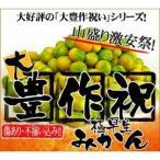 柑橘類 - 最安値に挑戦!極早生大豊作みかん10kg 温州 【送料無料】訳あり