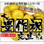 柑橘類 - 大豊作祝いの文旦8〜10kg【送料無料】